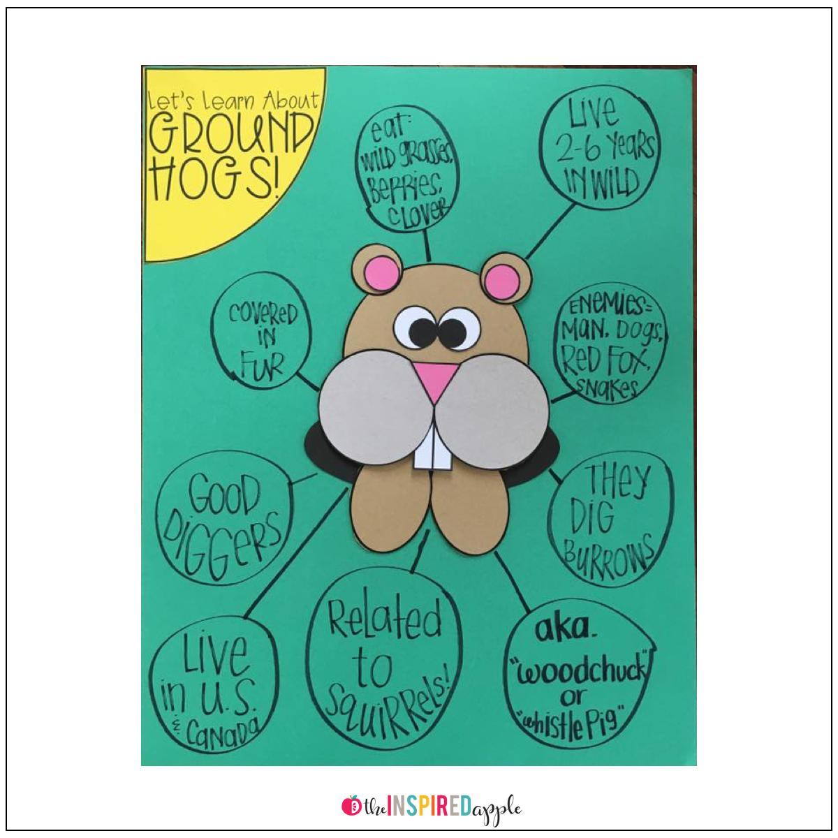 Groundhog Craft | Pinterest | Anchor charts, Kindergarten and Activities