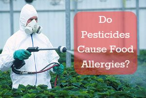 Pesticides cause food allergies / http://www.healthstartsinthekitchen.com/2013/02/20/do-pesticides-cause-food-allergies/
