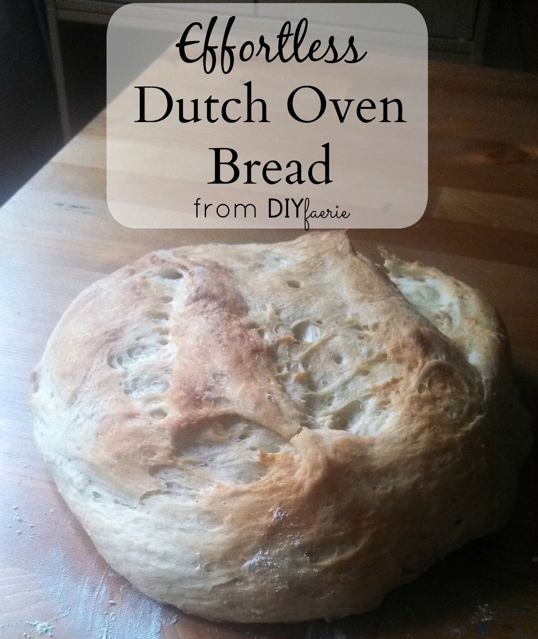 Even if you're just a little bit scared of yeast breads like I am this one will have you feeling like a bread making pro in no time! Easy and delicious!