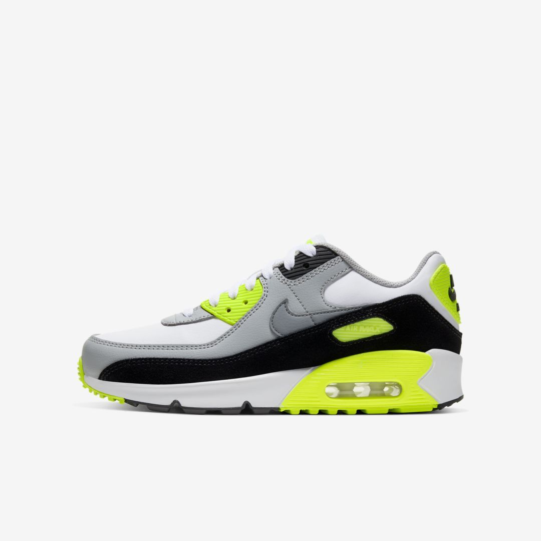 Nike Air Max 90 LTR Big Kids Shoe (White) in 2020 | Nike air