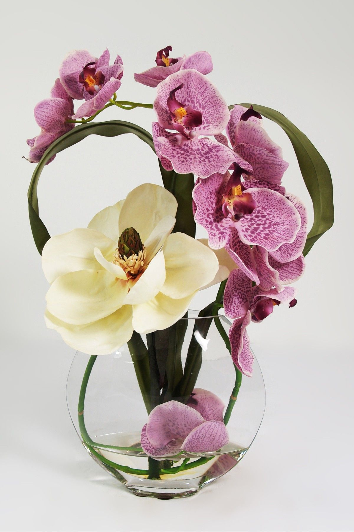 Phalaenopsis Orchid with Magnola in Glass