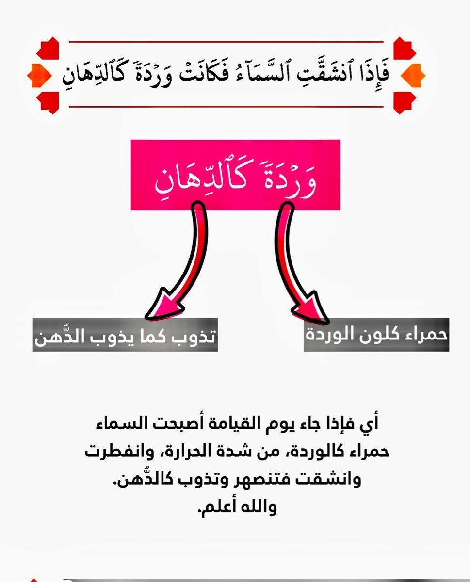 من فصيح العامي Arabic Langauge Book Lovers Arabic