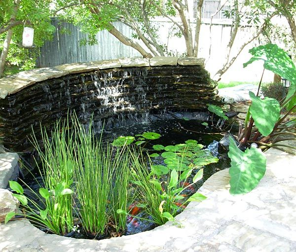 Koi Ponds Gallery | Sublime Water Garden Construction | Pond Depot Water  Garden Supplies | Dallas