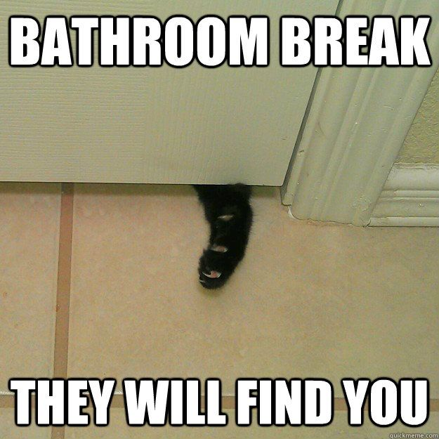 10 Best images about bathroom memes on Pinterest   Ankle boots  Vinyl decals and Showers. 10 Best images about bathroom memes on Pinterest   Ankle boots