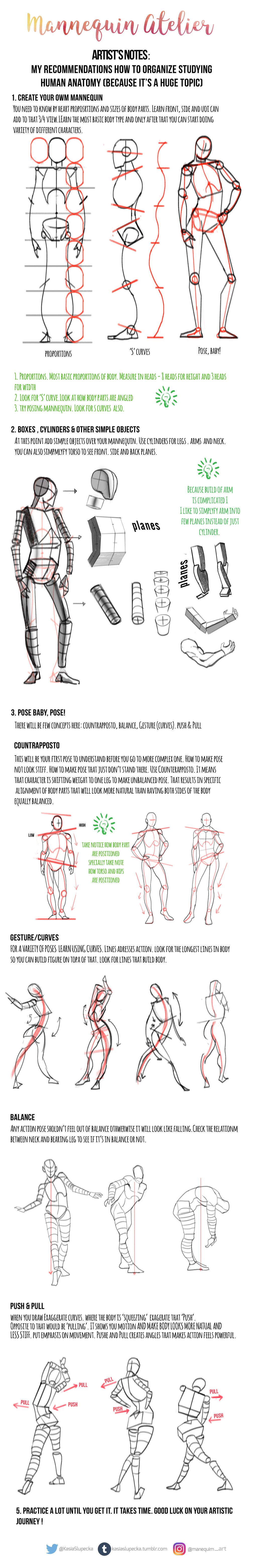 Drawing human figure by mannequin-atelier | How to draw | Pinterest ...