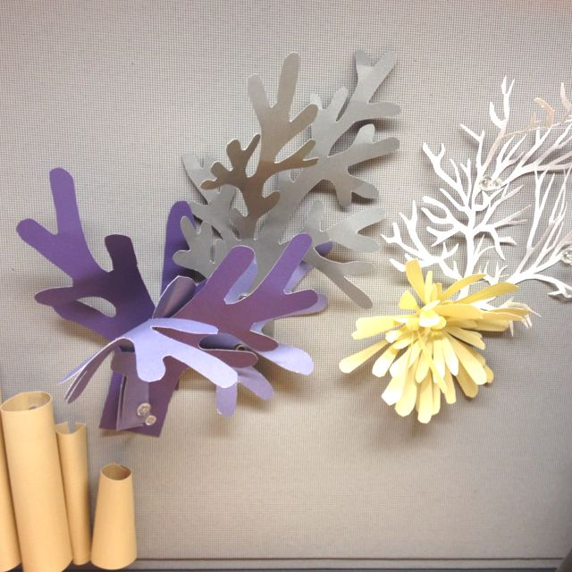 Coral Reef Craft, Under The Sea