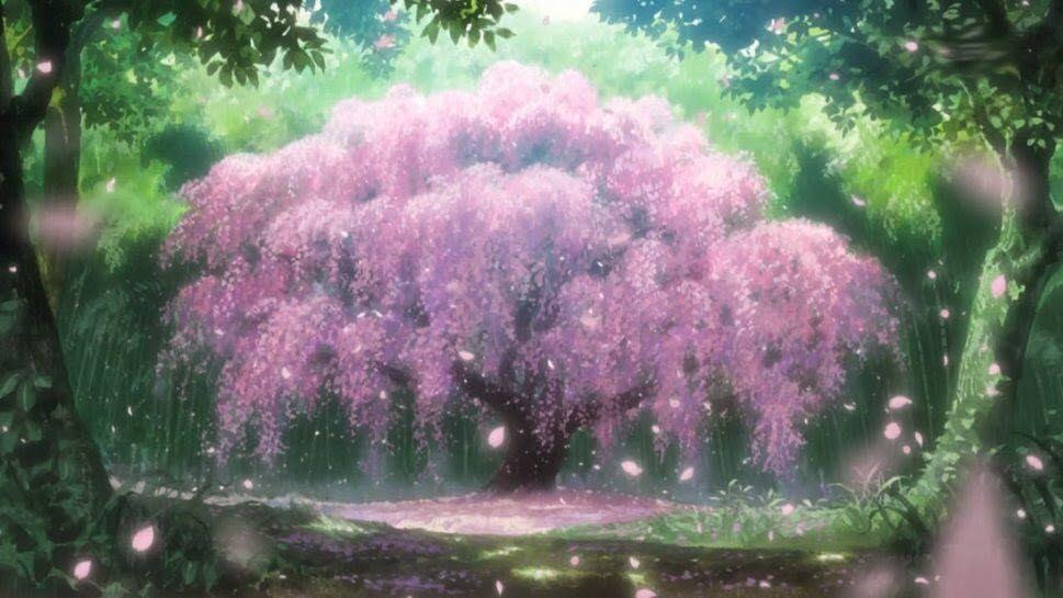 Back Again Sickness Anime Cherry Blossom Anime Scenery Wallpaper Anime Scenery