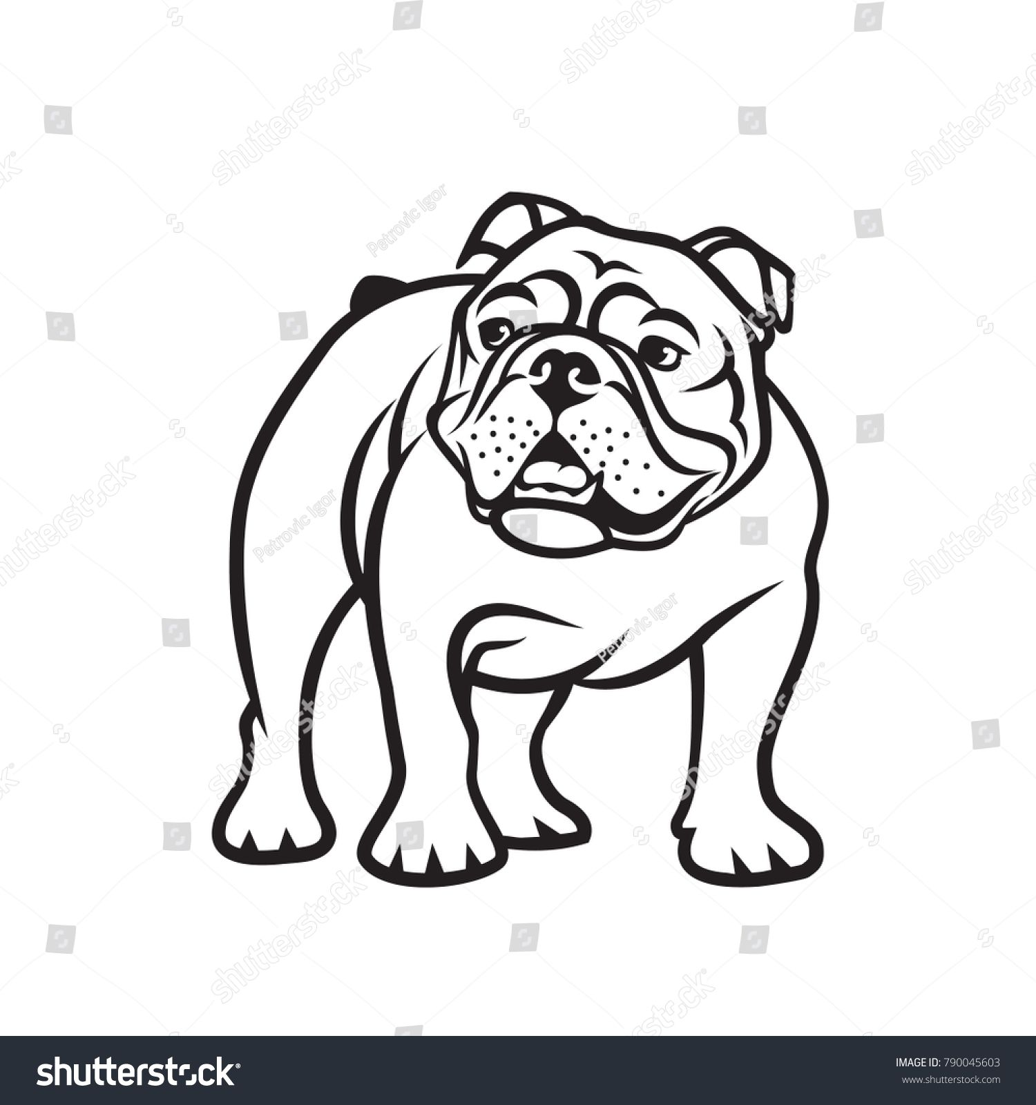 English Bulldog Isolated Outlined Vector Illustration Sponsored
