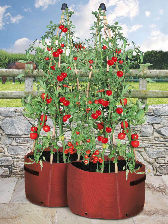 Tomaten-pflanz-taschen 2er Set | Garten | Pinterest Caprice Unopiu Eisen Rankgitter Sichtschutzzaun