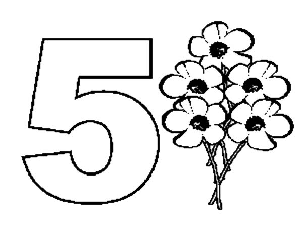 Pin On Number 5 Coloring Pages