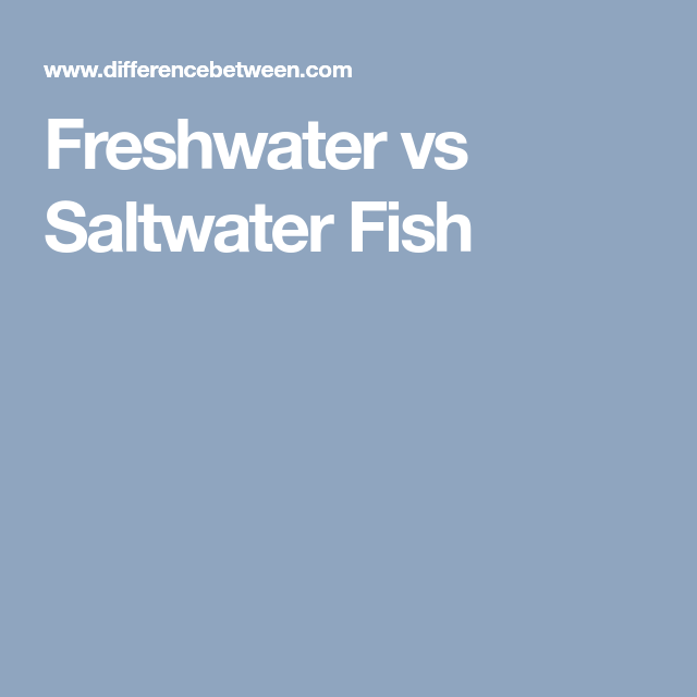 Difference Between Freshwater and Saltwater Fish ...