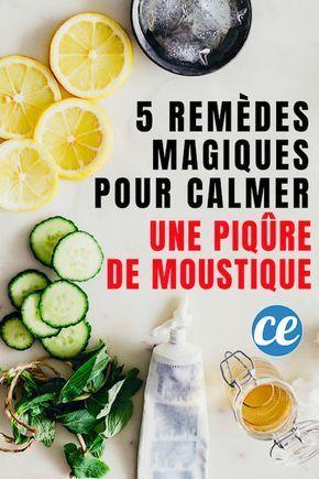 5 remèdes magiques pour calmer instantanément une piqûre de moustique. 5 …   – Broderie et Couture