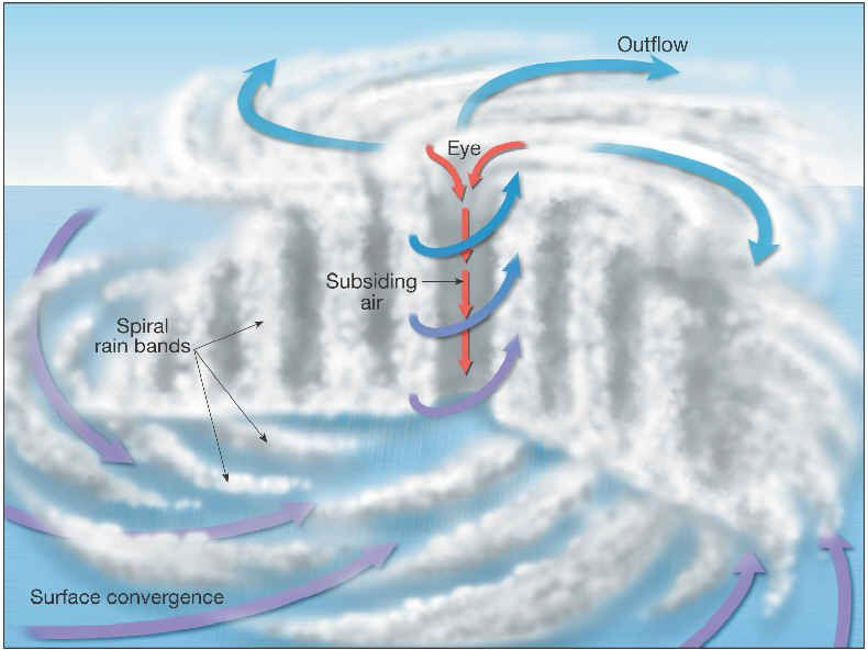 Hurricane Diagram Cross-section of a Hurricane Super Storms
