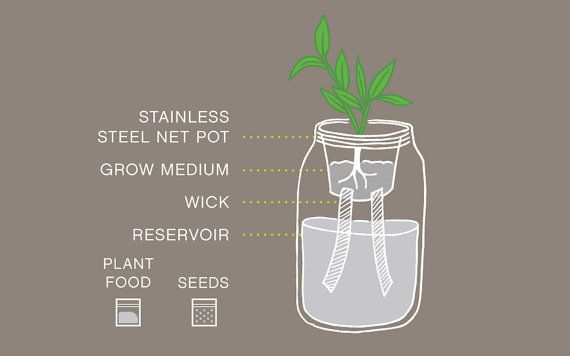 Mason Jar Flower Kit Self-Watering Planter for by ...