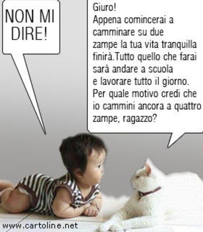 buon sabato divertente cerca con google sayings