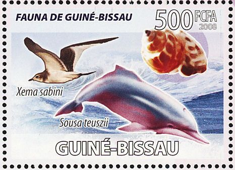 Sabine's Gull stamps - mainly images - gallery format