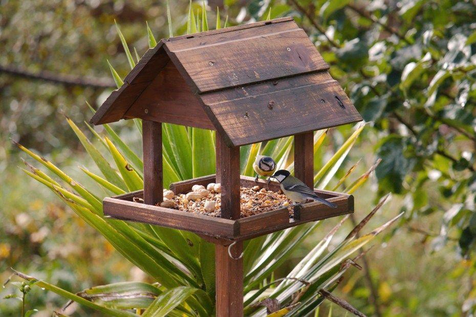 Ein Vogelhäuschen selbst bauen #vogelhausbauen