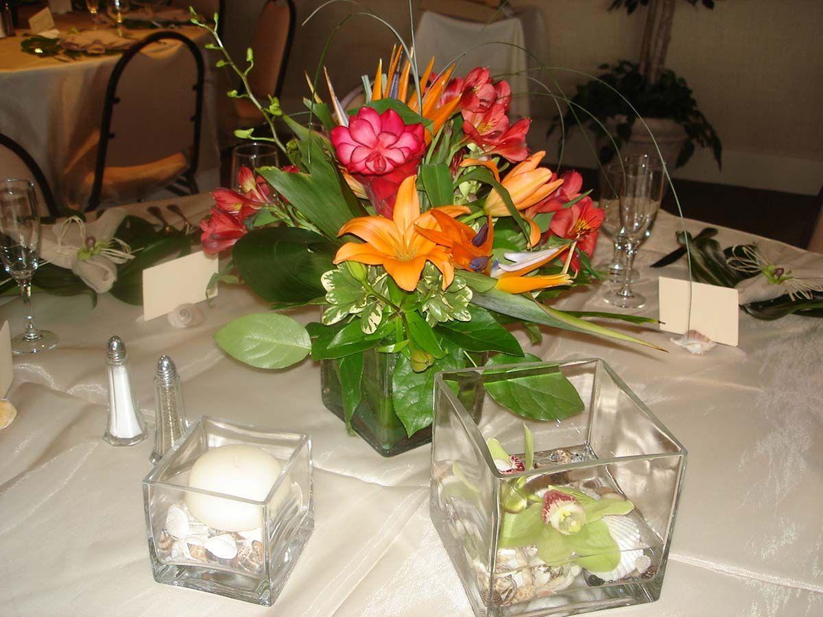 Ideas For The Tropical Themed Wedding: Siesta Key Wedding: Beautiful