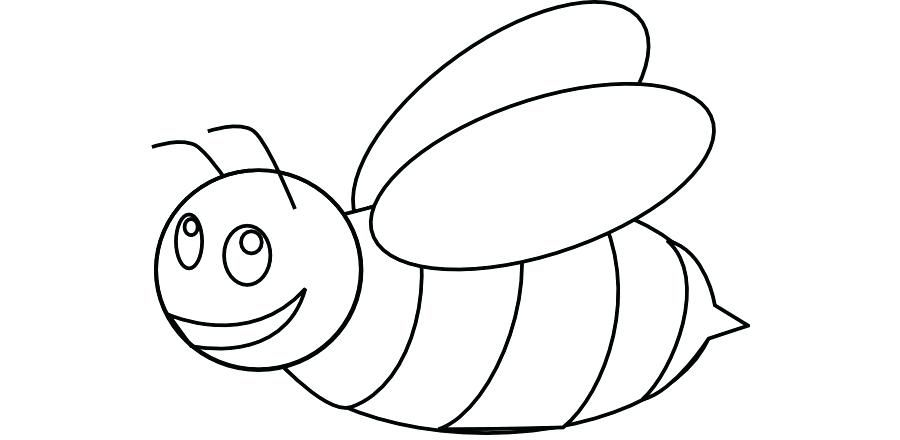 Bumble Bee Coloring Page Bumblebee Outline Honey Bee Clip Art