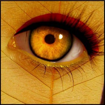 Autumn Eye by ~PoisenedYouth on deviantART
