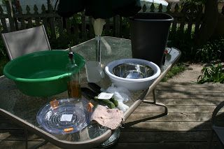Ashley Diy Diy Concrete Bird Bath For Under Ten Bucks Gardening