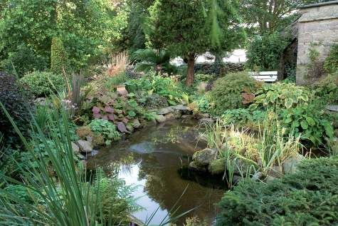 Kiehtova Killurneyn puutarha - Suomela