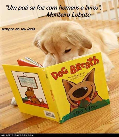 Cute Dogs With Books Dogs Reading Dogs Dog Breath Cute Dogs