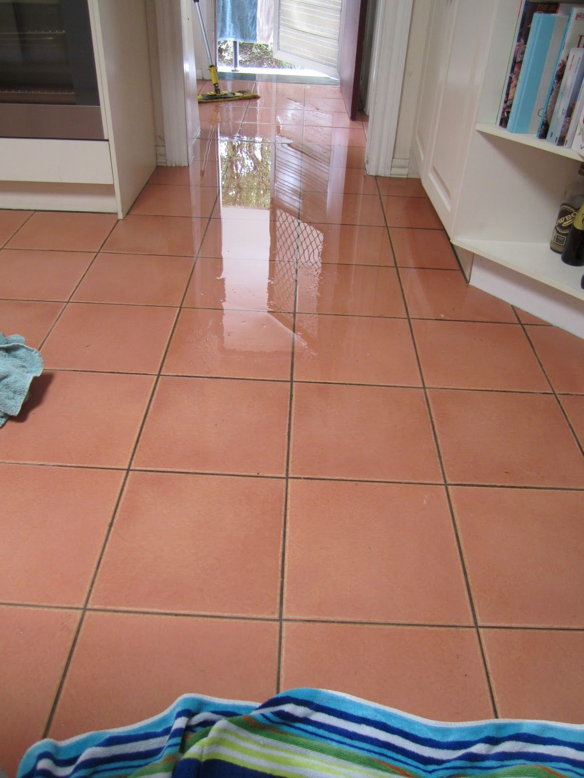 How to Deal with Flooded Basement Carpet http//www