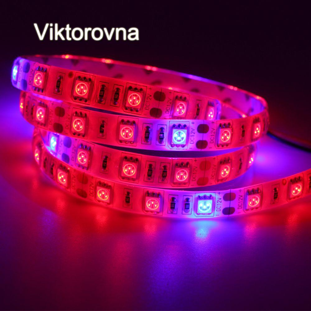 60ledm 5050 volledige spectrum led kweeklampen waterdichte 5red 1 blauw aquarium led verlichting kas