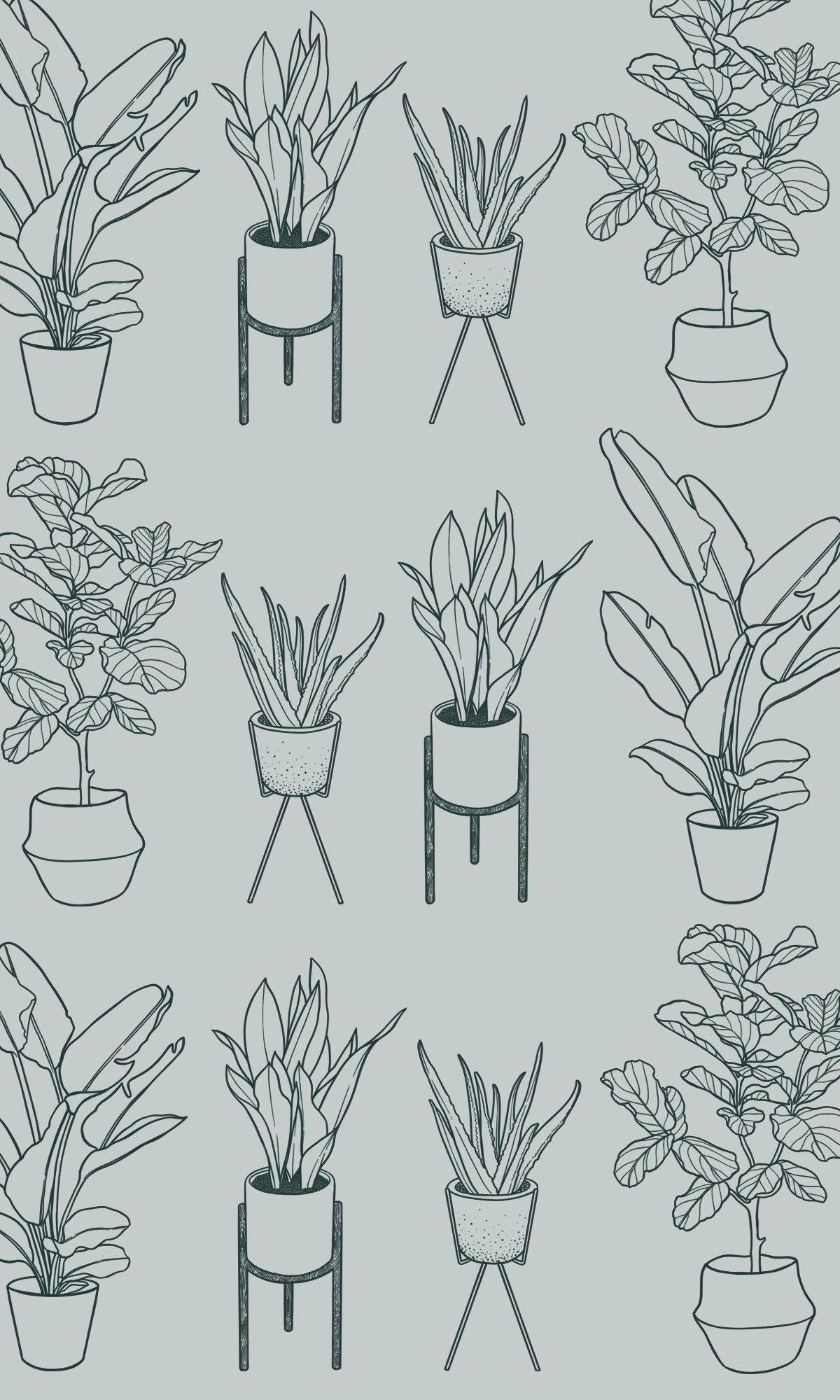 Plant Lady Illustrated Houseplant Series Surface Pattern Design Jodi Tellier Plant Sketches Plant Tattoo Plant Drawing