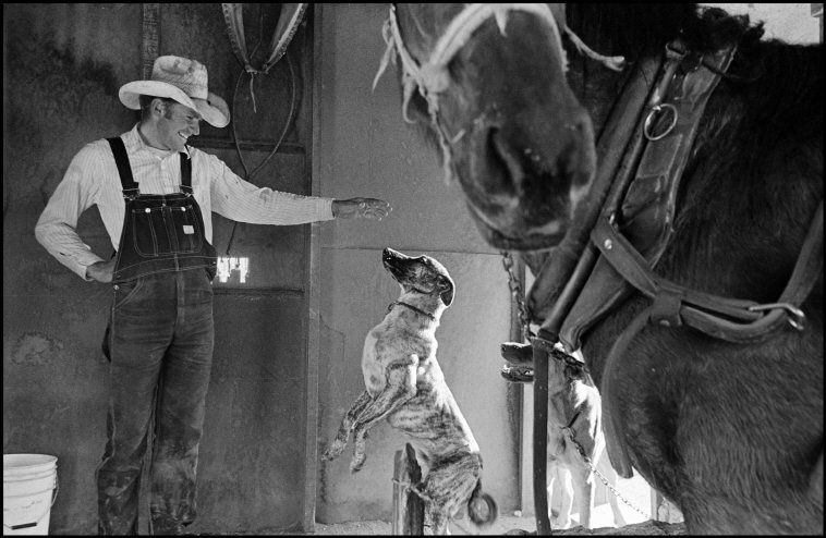 Larry Towell MEXICO. Durango. 1998. Durango Colony. Mennonites.