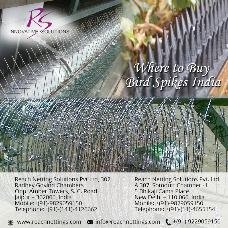 Efficient and Cost-effective #bird #deterrent services for