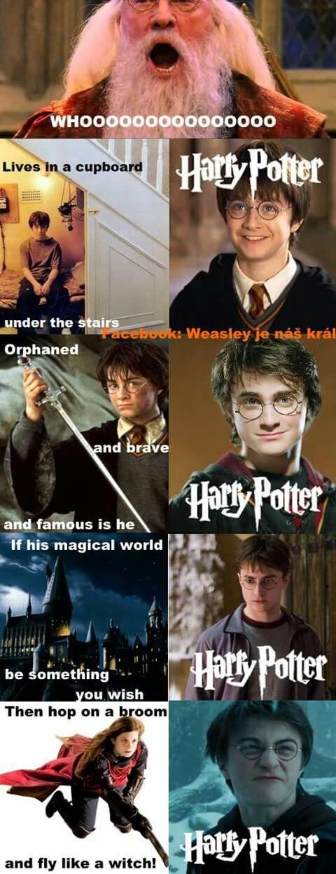 Harry Potter Harry Potter Haaaaaaaaaary poooooteeer *spongebob nose