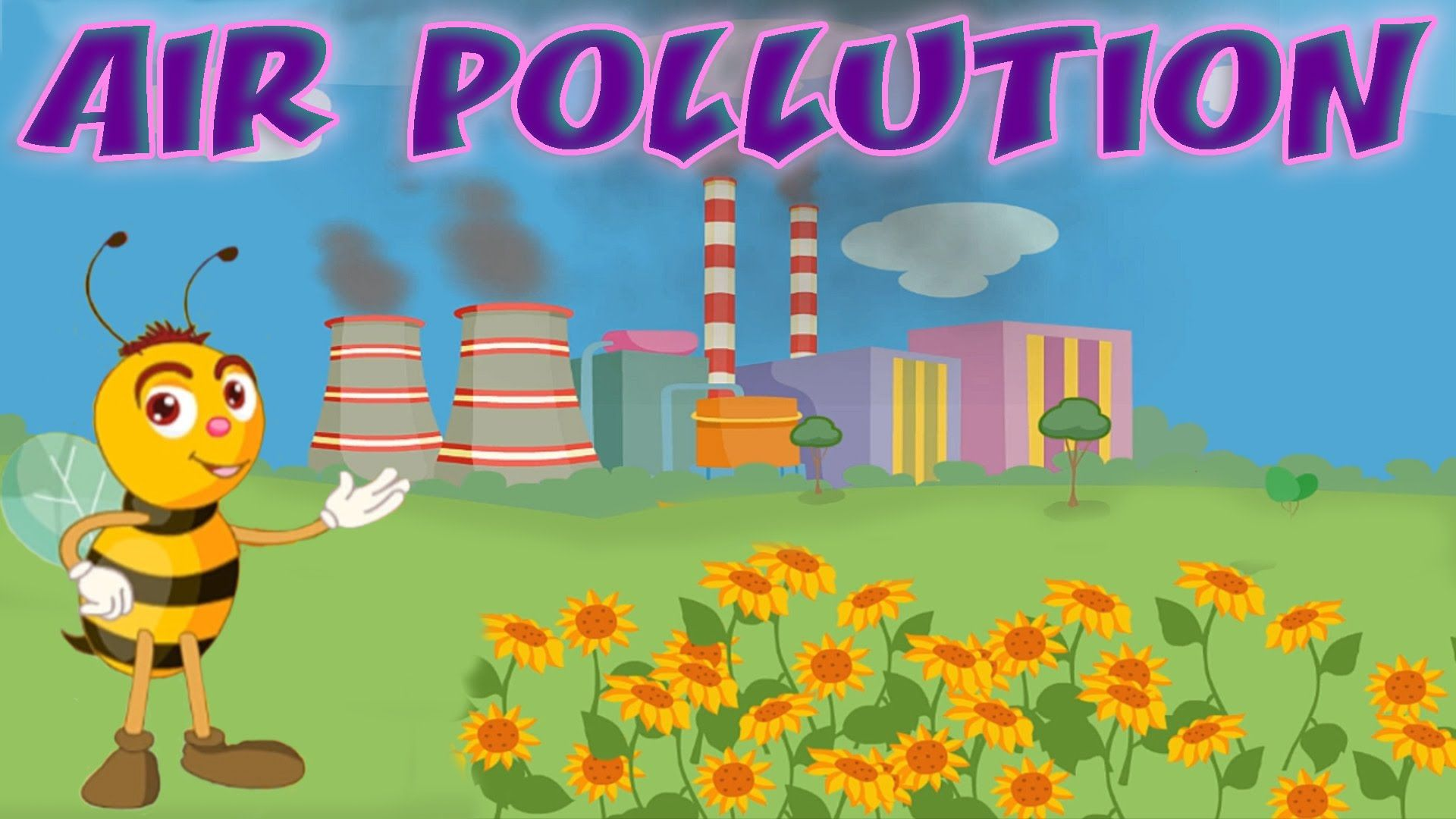 Air Pollution Causes & Effects, Air Quality Index