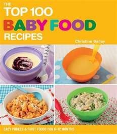 Baby food recipe book making baby food pinterest baby food baby food recipe book forumfinder Gallery