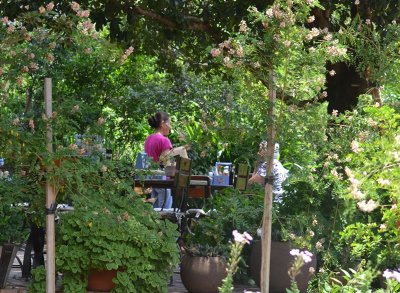 Random Harvest Nursery Farm Tea Garden