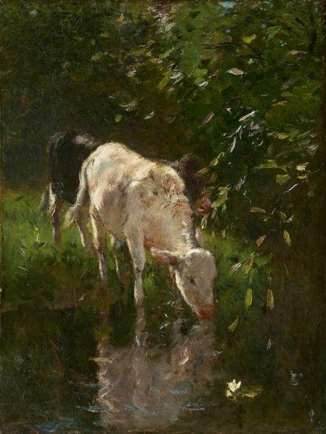 Willem Maris (Den Haag 1844-1910) Drinkend wit kalfje - Kunsthandel Simonis en Buunk, Ede (Nederland).