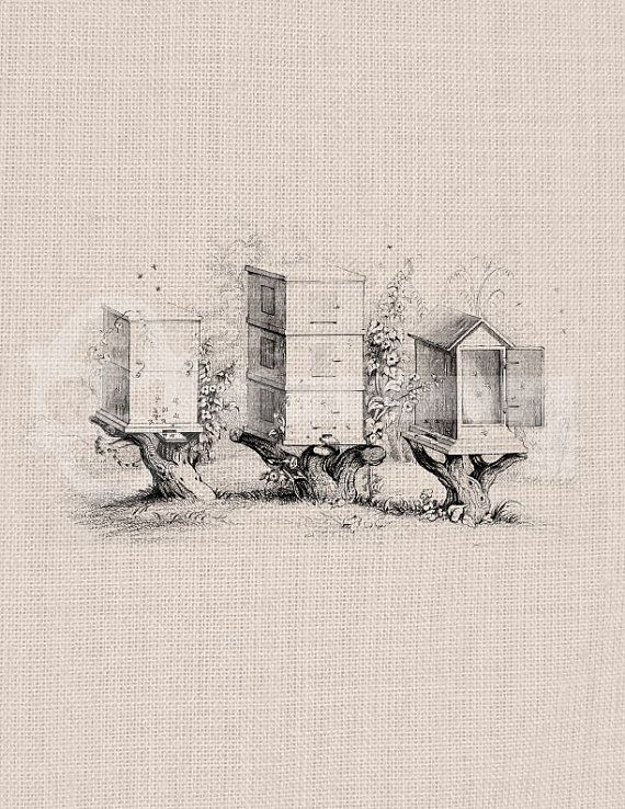 Vintage bee hives Graphic Digital Download by TanglesGraphics, $1.00