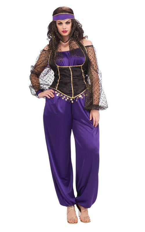 Adult Womens Harem Princess Genie Plus Size Fancy Dress Halloween