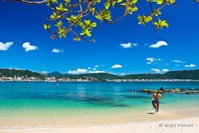 As Praias Mais Lindas Do Brasil Lindas Paisagens Brasil Praia