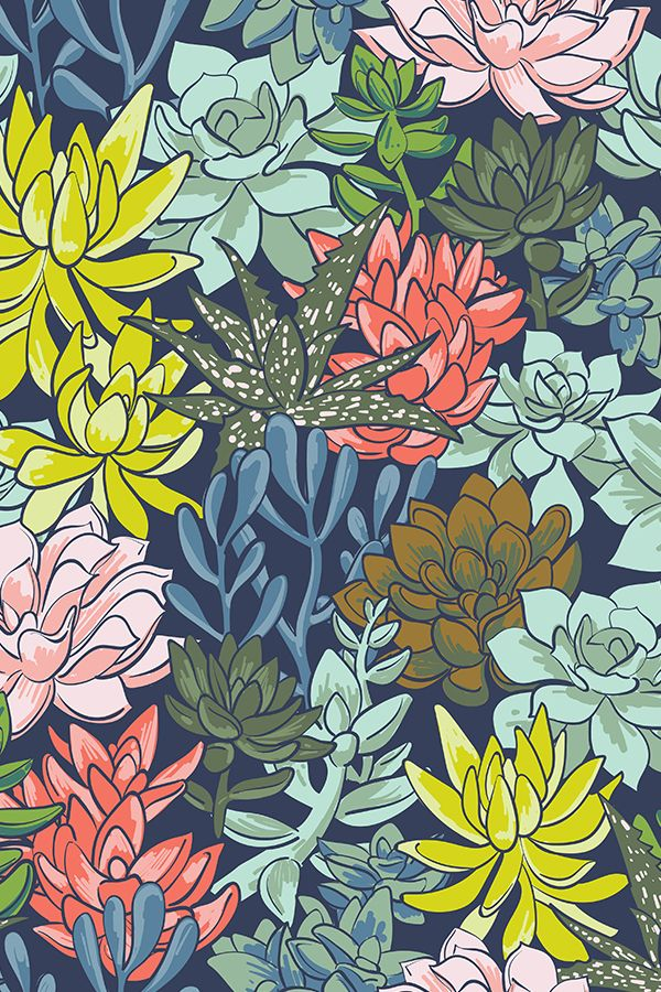 Succulent Obsession by elizabethatlas - Yellow, red, green, brown and mauve succulent plants on fabric, wallpaper, and gift wrap.  Beautiful botanical illustration on a deep navy background.