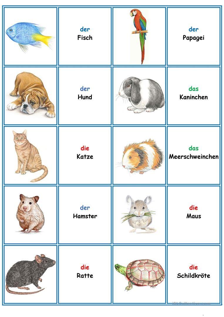 Spiele Im Deutschunterricht Memory Die Tiere Deutsch Unterricht Deutsch Lernen Spiele Deutsch Lernen Kinder