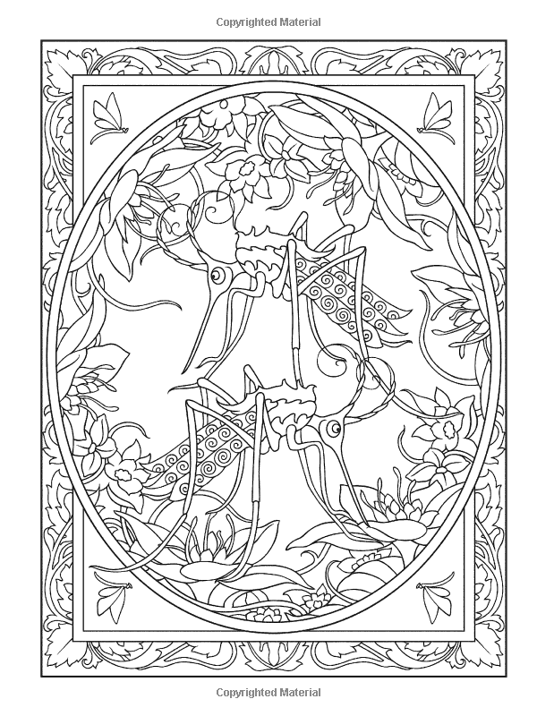 Creative Haven Incredible Insect Designs Coloring Book Creative Haven Coloring Books Mar Designs Coloring Books Creative Haven Coloring Books Coloring Pages