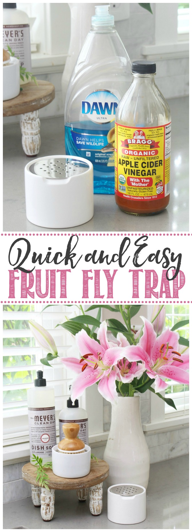 How to Get Rid of Fruit Flies Clean and Scentsible in