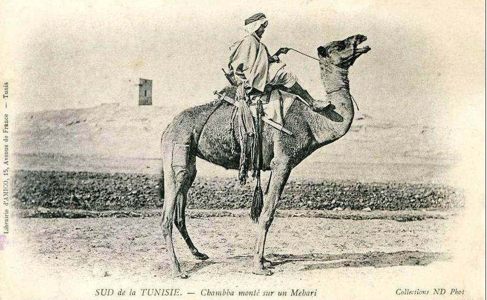 Про Судан и не только... | Старые фотографии, Всадники и ...