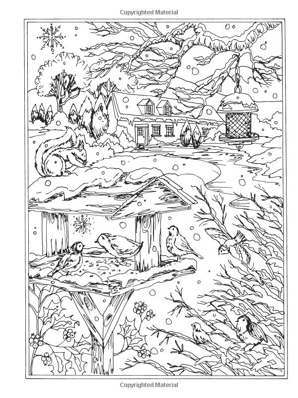 Amazon.com: Creative Haven Winter Wonderland Coloring Book ...