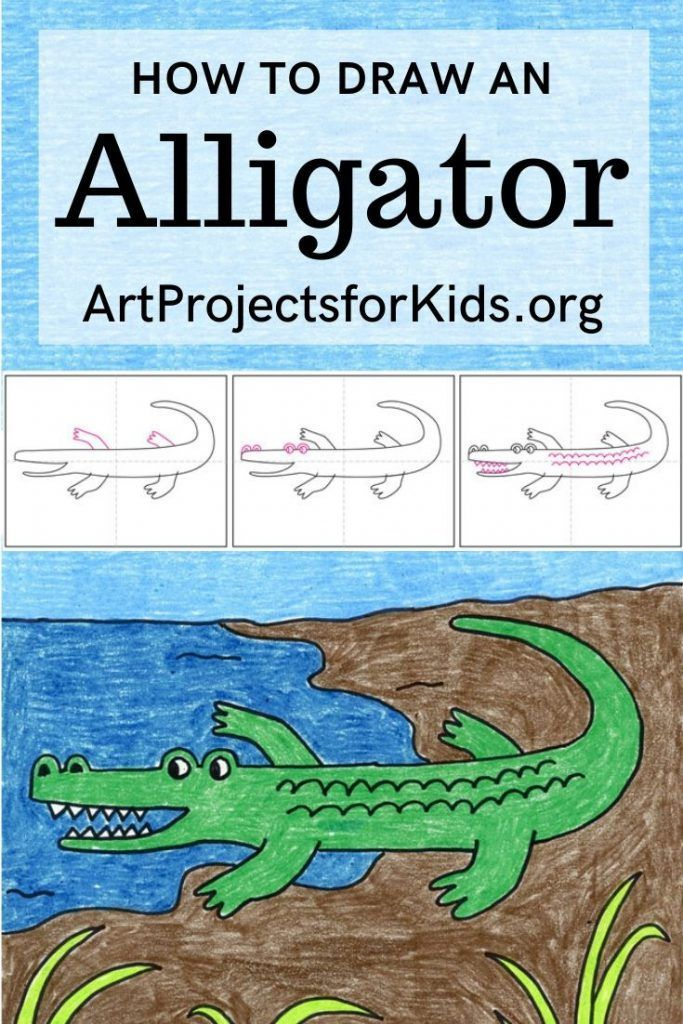 How to Draw an Alligator · Art Projects for Kids in 2020 ...
