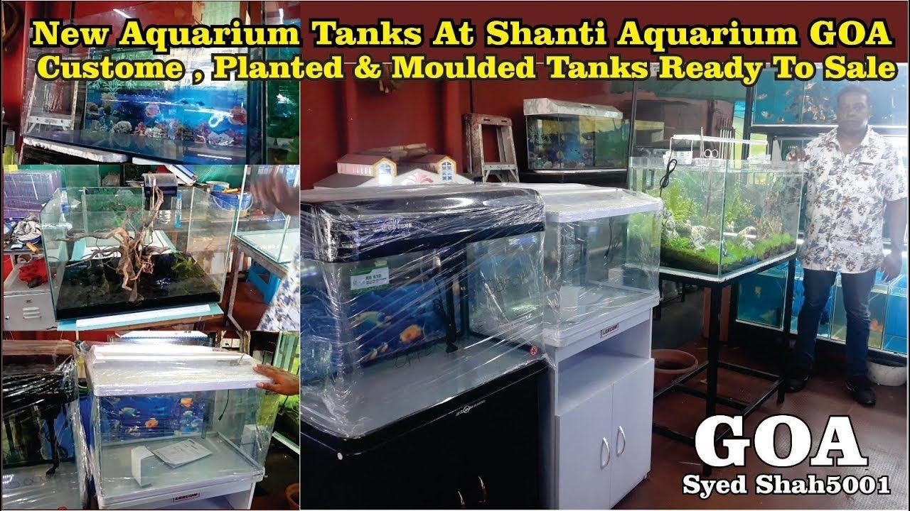 New Imported Moulded Fish Tanks At Shanti Aquarium Goa Newfishtankforsale Aquarium Fish Tank Fish Tank Fish Tank For Sale