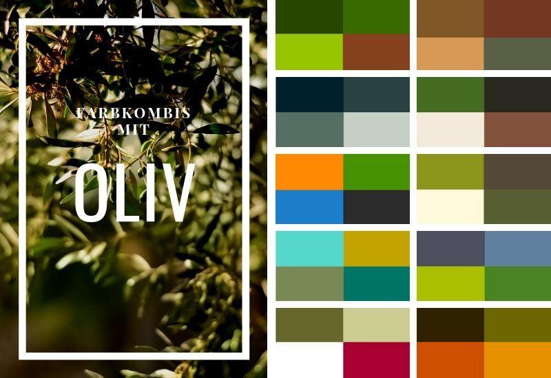 So Kombinierst Du Olivgrun Was Passt Zu Oliv Grun Look Grun Oliven Farbschema