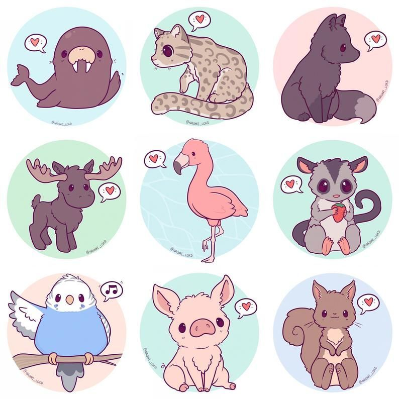 Kawaii Animals Stickers, Owl, Snow Leopard, Shiba, Fox, Husky, Peacock, Corgi, sloth, fennec, pengu